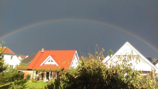 Regenbogen-