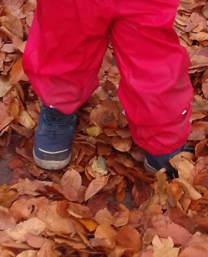 Bunte Blätter rascheln schon2-1